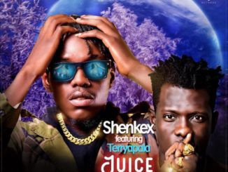 Shenkex - juice Ft Terry Apala | TOOAFRIC.com